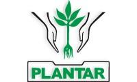 Plantar Reflorestamentos